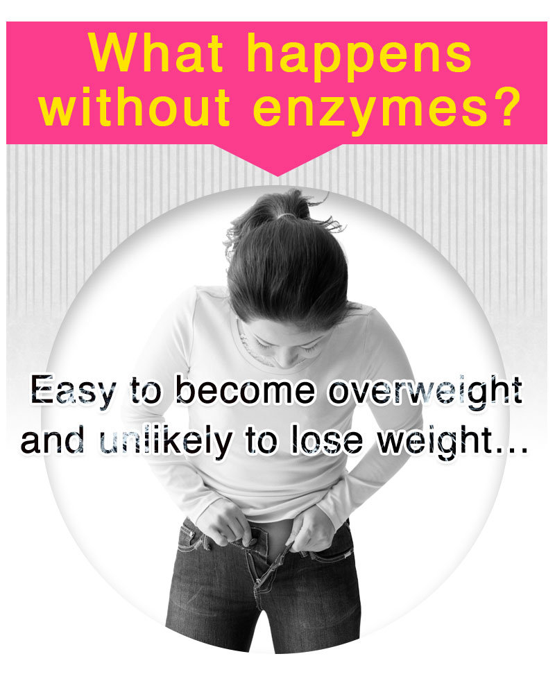 What happens without enzymes? Easy to become overweight and unlikely to lose weight…